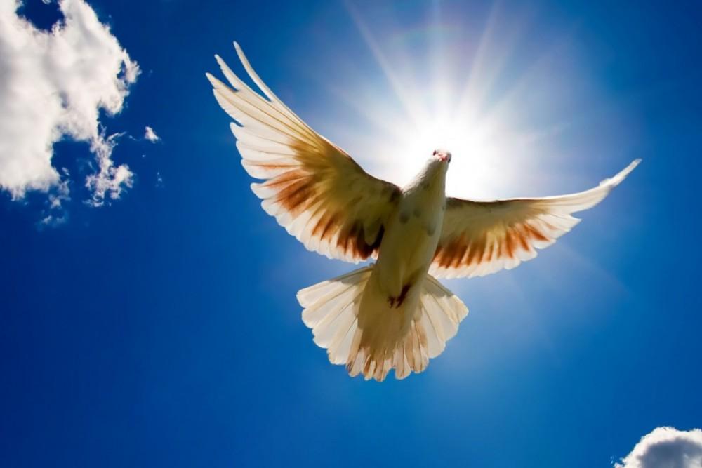 Επιδιώκουμε την παγκόσμια ειρήνη και ελευθερία
